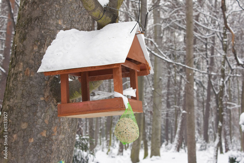 Small wooden bird house hanging on a tree in forest