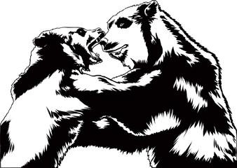 битва медведей