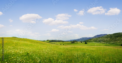 Leinwandbild Motiv summer valley
