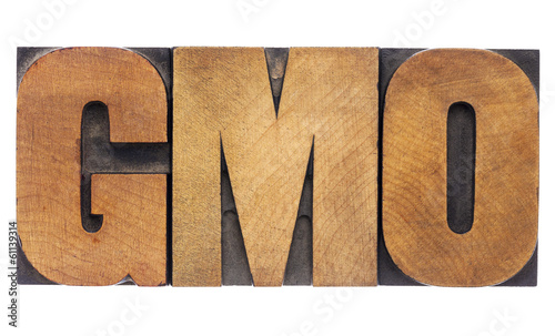 GMO acronym in wood type