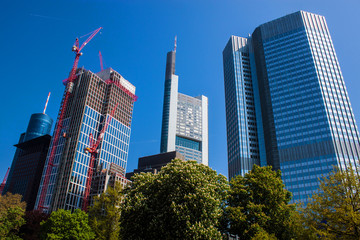 Skyscrapers in Frankfurt, Germany