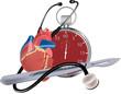 cuore cardiogramma