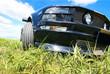 Leinwandbild Motiv sports car on grass against the sky