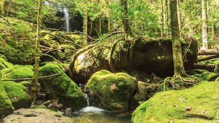Timelapse : Beautiful waterfall in forest, Thailand., HD