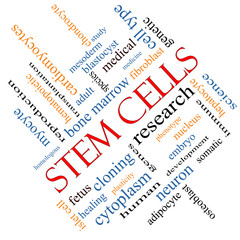Stem Cells Word Cloud Concept Angled