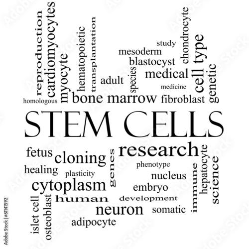 Leinwandbild Motiv Stem Cells Word Cloud Concept in black and white
