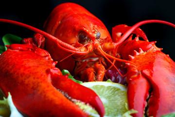 .Boiled lobster and lemon