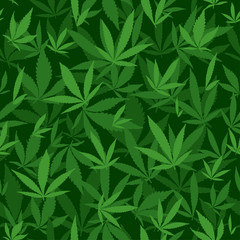 Seamless vector pattern with marijuana leaves