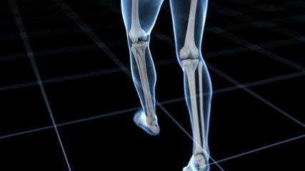 jogging guy - visible skeleton