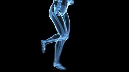 jogging guy - leg bones