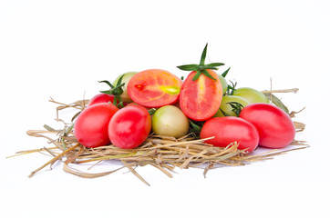 Tomatoes style – Lycopersicon exculentum Mill