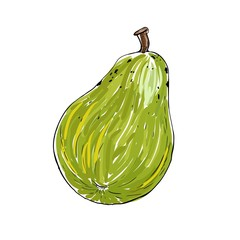 Pear in vector