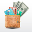 Leather wallet  with credit cards, dollars USA . Vector