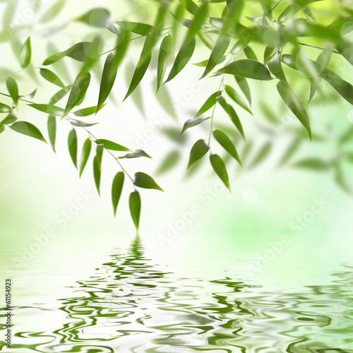 canvas print picture Natur im erwachen
