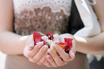 Hand of a woman full of rose petals, focus on petals