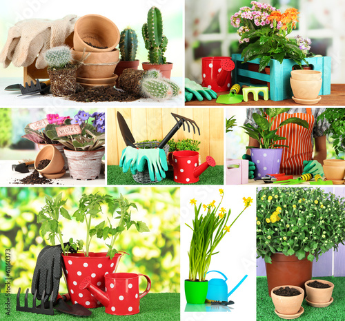 Collage of gardening closeup