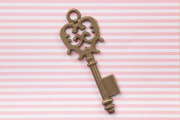 Old key on vintage background