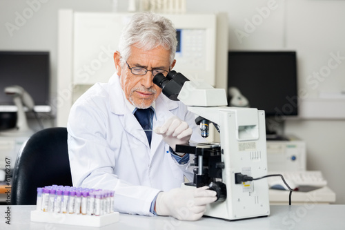 Researcher Examining Microscope Slide In Lab