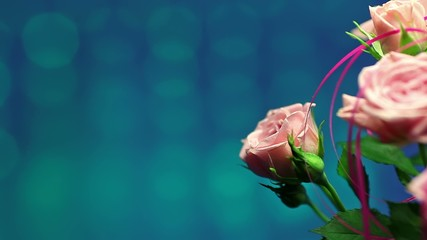 Pink rose with turquoise background in the wind