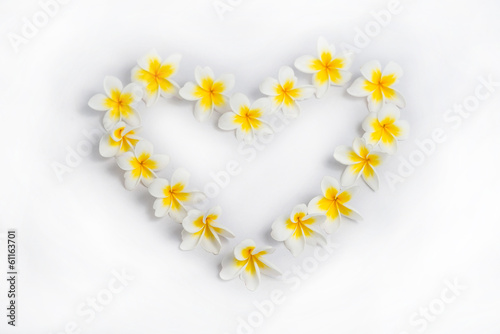 In de dag Frangipani Plumeria Frame heart