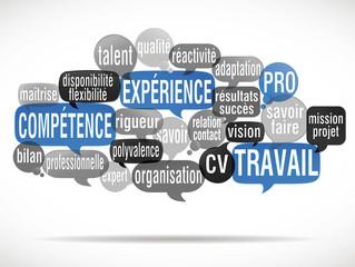 nuage de mots : compétence expérience (cs5)