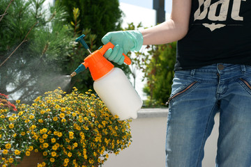 Spraying plants on a terrace