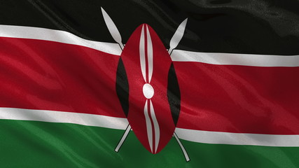 Flag of Kenya waving in the wind - seamless loop