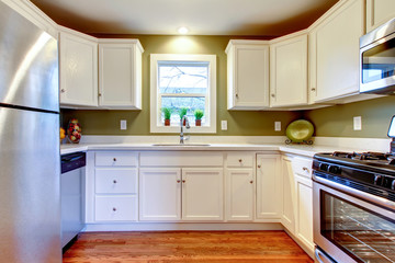 White and olive bright kitchen room