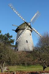 Turmwindmühle Mühlenberg Anholt