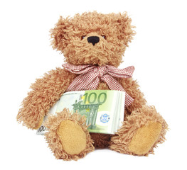 Bear toy with money