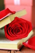 romantic still life book and red rose on wooden background