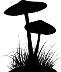 Silhouette of two poisonous mushrooms