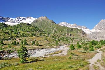 Felsiges Vorfeld des Langgletschers im Lötschental