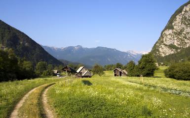 Alpine valley in Slovenia, Bohinj