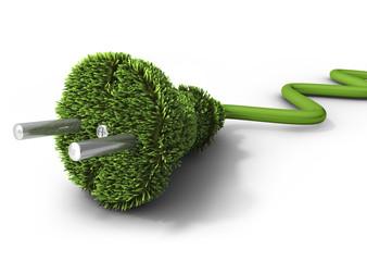 Nautre Grass Plug