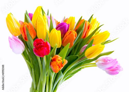 Foto op Canvas Tulp Blumen zum Valentinstag