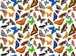 seamless background from many butterflies