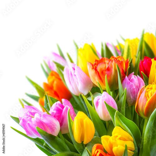 Fototapety, obrazy : bunter Blumenstrauß