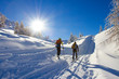 cross-country skiing - 61194703