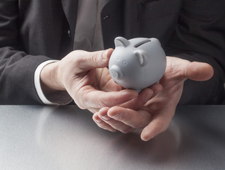 professional hands displaying a piggy bank