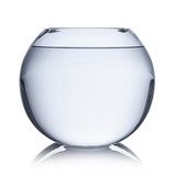 empty fishbowl