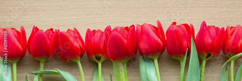 banner-czerwone-tulipany