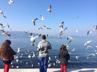 Kuş seven Çocuklar