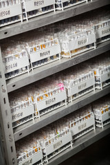 Racks Of Test Tubes On Shelves