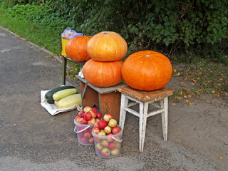 Roadside trade in vegetables and fruit