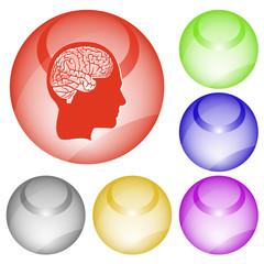 Human brain. Vector interface element.