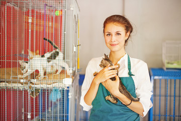 woman working in animal shelter