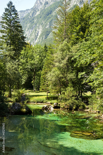 Triglav Nationalpark - Waldsee