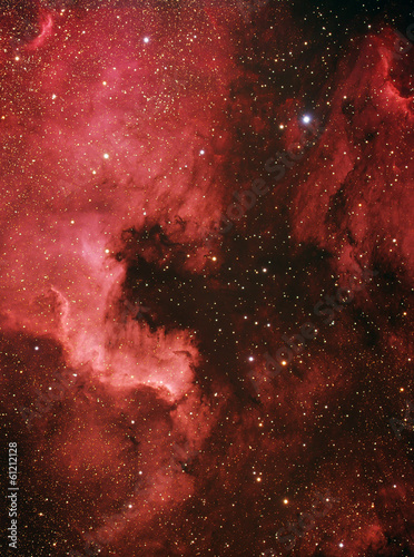 North America and Pelican Nebulae