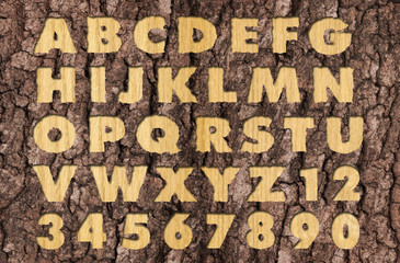 Carved Oakwood alphabet